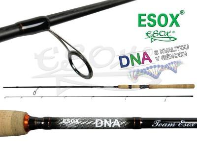 ESOX DNA 228
